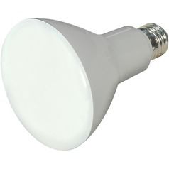 Satco Ditto LED Bulb