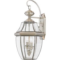 Outdoor Wall Light with Clear Glass in Pewter Finish