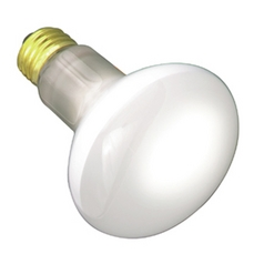Frosted 100-Watt Light Bulb