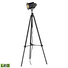 Dimond Lighting Restoration Black LED Floor Lamp with Cylindrical Shade