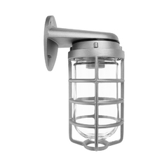 Outdoor Wall Light with Clear Glass in Silver Finish - 75W