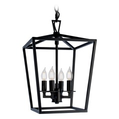 Norwell Lighting Cage Matte Black Pendant Light