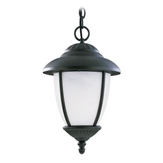 Sea Gull Lighting Yorktown Forged Iron LED Outdoor Hanging Light