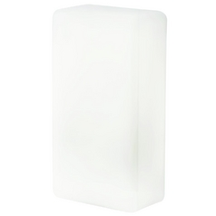 Outdoor Wall Light with White Glass