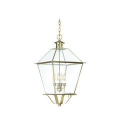 Troy Lighting Outdoor Hanging Light with Clear Glass in Natural Aged Brass Finish FCD8959NAB
