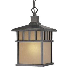 Dolan Designs Lighting Fluorescent Hanging Outdoor Pendant 9713-68