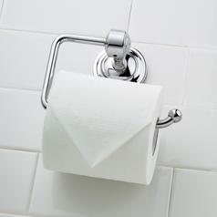 Norwell Lighting Emily Chrome Toilet Paper Holder