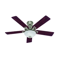 Hunter Fan Company the Astoria Brushed Nickel Ceiling Fan with Light