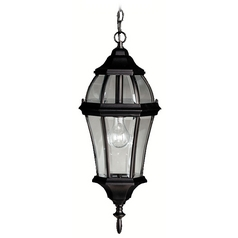 Kichler Outdoor Hanging Light with Clear Glass in Black Finish