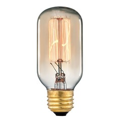 Elk Lighting Vintage Filament Incandescent Bulb