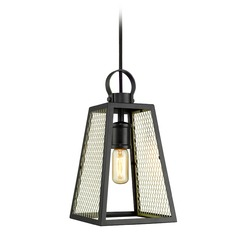 Abbott Medium Pendant in Black with Satin Brass Mesh Panels