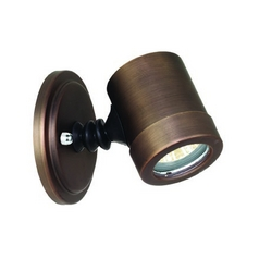 Modern Flood / Spot Light with Clear Glass in Bronze Finish