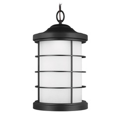 Etched Seeded Glass LED Outdoor Hanging Light Black Sea Gull Lighting