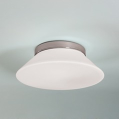 Illuminating Experiences Radiant Flushmount Light