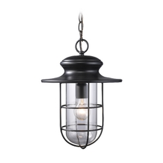 Outdoor Hanging Light with Clear Glass in Matte Black Finish