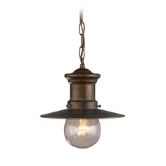 Outdoor Hanging Light with Clear Glass in Hazlenut Bronze Finish
