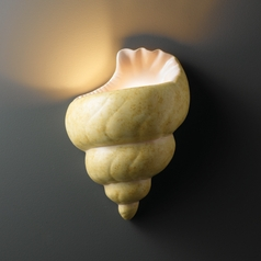 Sconce Wall Light in Conch Shell Finish