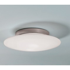 Illuminating Experiences Aura Flushmount Fluorescent Light