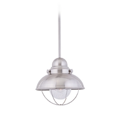 Pendant Light with Clear Glass in Brushed Stainless Finish