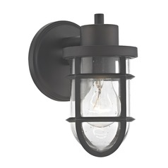 Seeded Glass Outdoor Wall Light with Bronze Cage