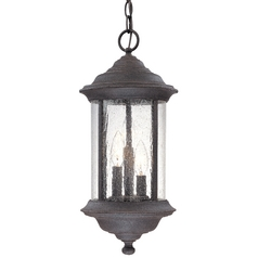 Dolan Designs Hanging Outdoor Pendant 919-53