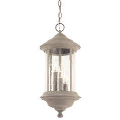 Dolan Designs Hanging Outdoor Pendant 919-51