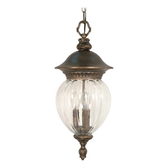 Nuvo Lighting Outdoor Hanging Light with Clear Glass in Platinum Gold Finish 60/789