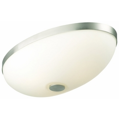 Oval Flushmount Ceiling Light