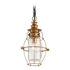 Troy Lighting Outdoor Hanging Light with Clear Cage Shade in Aged Brass / Forged Black Finish F3577