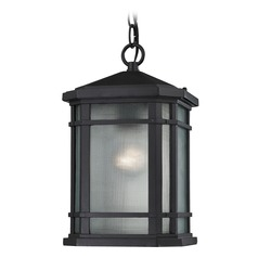 Elk Lighting Lowell Matte Black Outdoor Hanging Light