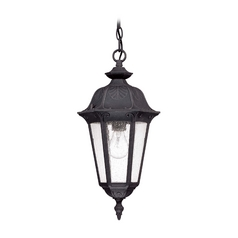 Outdoor Hanging Light with Clear Glass in Satin Iron Ore Finish