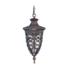 Outdoor Hanging Light with Clear Glass in Dark Plum Bronze Finish