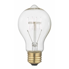 Design Classics Lighting Nostalgic Vintage Edison Carbon Filament Light Bulb - 40-Watts 40A19 FILAMENT