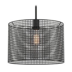 Lite Source Hamilton Black Pendant Light with Drum Shade