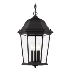 Livex Lighting Hamilton Black Outdoor Hanging Light