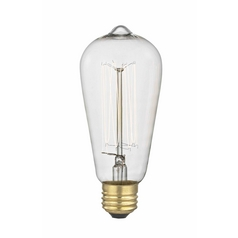 Industrial Edison Squirrel Cage ST58 Light Bulb - 60-Watts 2400K