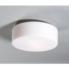 Illuminating Experiences Tango LED Flushmount Light