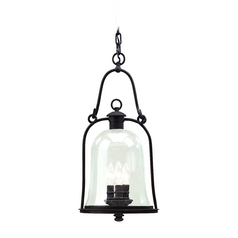 Outdoor Hanging Light with Clear Glass in Natural Bronze Finish