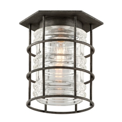 Troy Lighting Close To Ceiling Light with Clear Glass in Aged Pewter Finish C3790