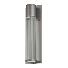 Modern Outdoor Wall Light with Clear Glass in Tinted Silver Finish