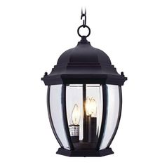 Livex Lighting Kingston Black Outdoor Hanging Light