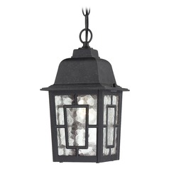 Outdoor Hanging Light with Clear Glass in Textured Black Finish
