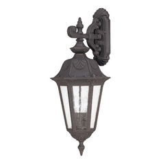 Outdoor Wall Light with Clear Glass in Satin Iron Ore Finish