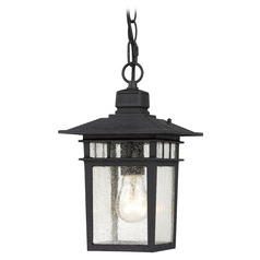 Seeded Glass Outdoor Hanging Light Black Nuvo Lighting