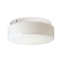 Progress Close To Ceiling Light with White in White Finish