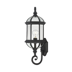 Outdoor Wall Light with Clear Glass in Textured Black Finish
