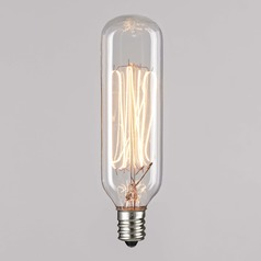 T25 40-Watt Incandescent Filament Light Bulb 2400K