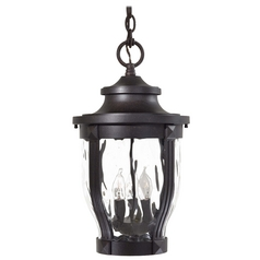 Outdoor Hanging Light with Clear Glass in Corona Bronze Finish