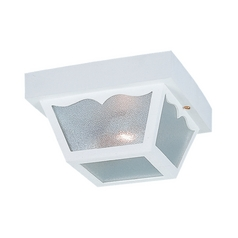 Close To Ceiling Light with Clear Glass in White Finish