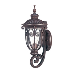 Outdoor Wall Light with Clear Glass in Burlwood Finish
